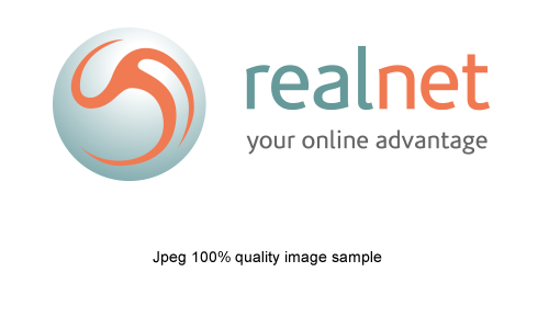 Realnet's insights into images and page optimisation